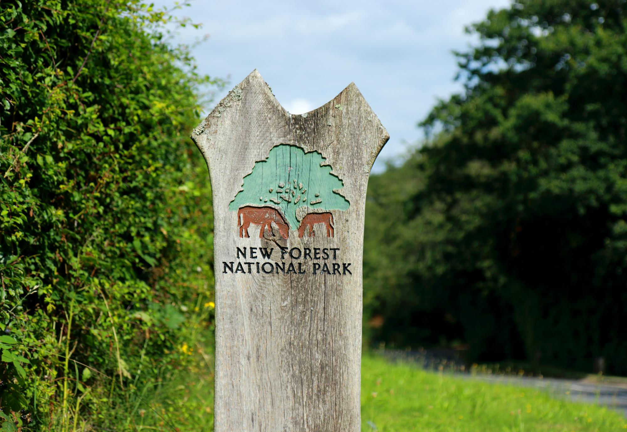 New Forest National Park sign