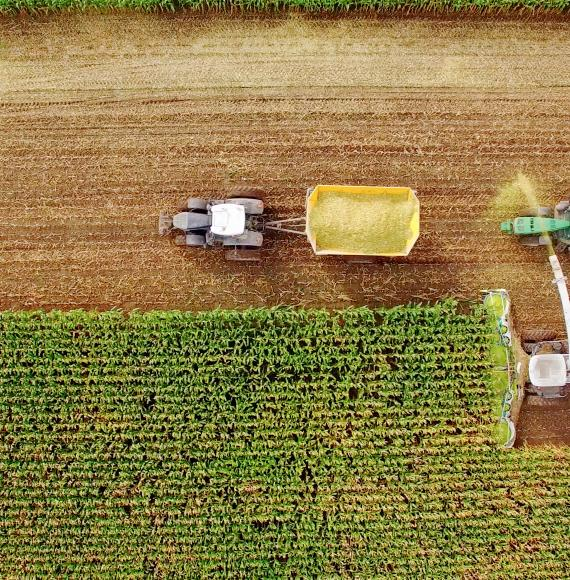 Farm machines harvesting corn in Midwest, September, aerial view.
